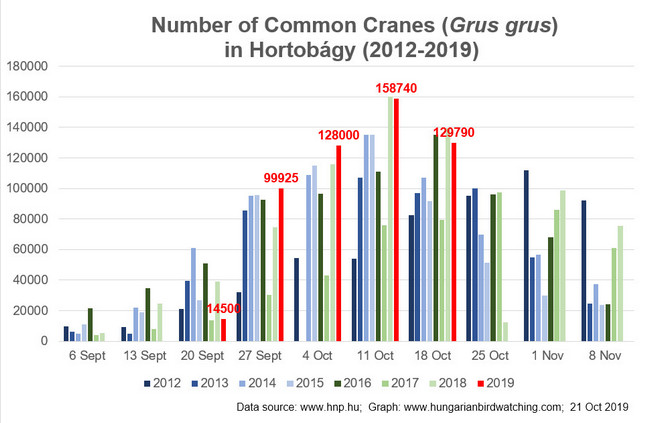 Common Crane count 18 Oct 2019