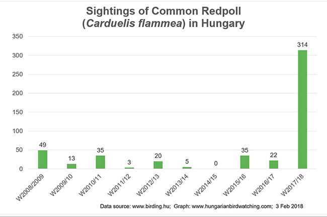 Common Redpoll Sightings pic